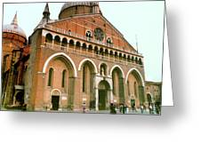 Bascila St. Antonia In Padua, Italy Greeting Card