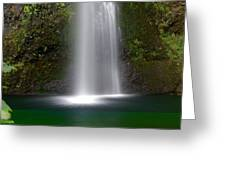 Base Of The Falls Greeting Card