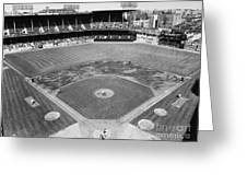 Baseball Game, C1953 Greeting Card