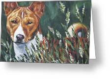 Basenji In Grass Greeting Card