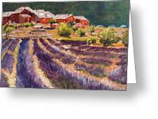 Lavender Smell Greeting Card