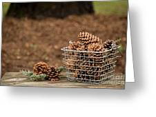 Basket Of Cones Greeting Card