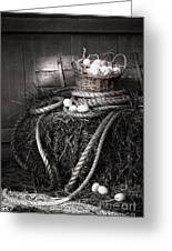Basket Of Eggs On A Bale Of Hay Greeting Card