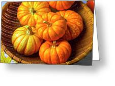 Basket Of Pumpkins Greeting Card