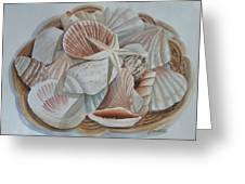 Basket Of Shells Greeting Card