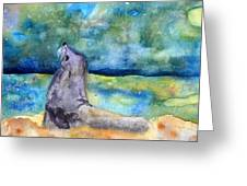 Basking In The Moonlight Greeting Card