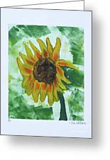 Basking In The Sun Greeting Card