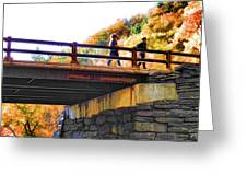Bastion Falls Bridge 1 Greeting Card
