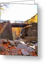 Bastion Falls Bridge 6 Greeting Card