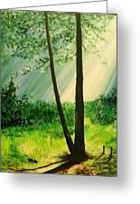 Bathed In Light Greeting Card