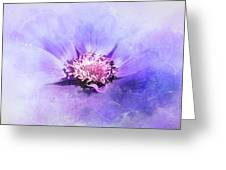 Bathed In Purple Greeting Card