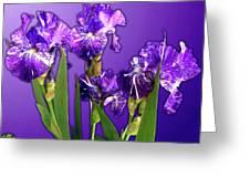 Batik Irises Greeting Card