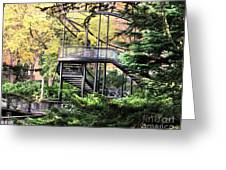 Battery Park Fall Colors  Greeting Card