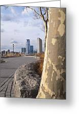 Battery Park Greeting Card