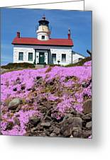 Battery Point Lighthouse In Crescent City Greeting Card