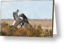Battle In The Bush Greeting Card