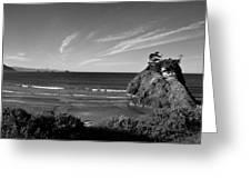 Battle Rock Beach Oregon Greeting Card