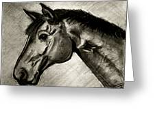 My Friend The Bay Horse Greeting Card