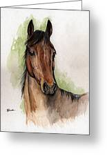 Bay Horse Portrait Watercolor Painting 02 2013 Greeting Card