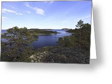 Bay Of The Baltic Sea And Pine Trees Greeting Card