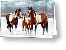 Bay Paint Horses In Winter Greeting Card