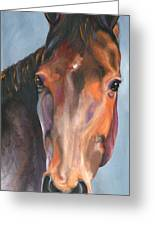 Thoroughbred Royalty Greeting Card
