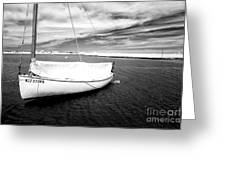Bay Sailboat Greeting Card by John Rizzuto