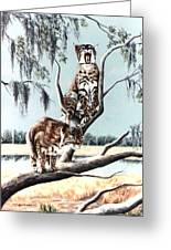 Bayou Bobcats Greeting Card