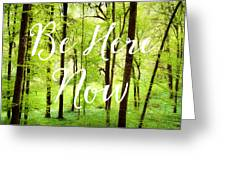 Be Here Now Green Forest In Spring Greeting Card