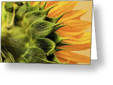 Be The Sunshine Greeting Card