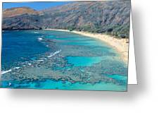 Beach And Haunama Bay, Oahu, Hawaii Greeting Card