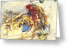 Beach Art Greeting Card