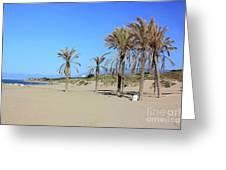 Beach At Cabopino Greeting Card