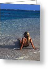 Beach At Little Cayman Greeting Card