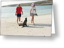 Beach  At Santa Fe Island In Galapagos Greeting Card