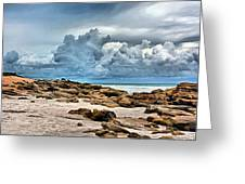 Beach At Washington Oaks Greeting Card