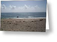 Beach Bobbiong Greeting Card