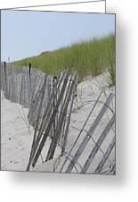 Beach Border Greeting Card by Patricia M Shanahan
