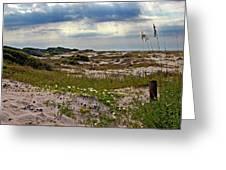 Beach Carpet Greeting Card