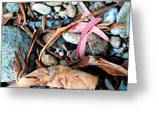 Beach Flotsam Greeting Card