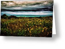 Beach Flowers Greeting Card