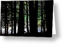 Beach Forest Greeting Card