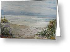 Beach Front Greeting Card by Dorothy Herron