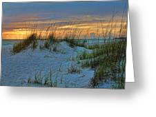 Beach Grass And Sand Dunes Greeting Card