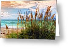 Beach Grass II Greeting Card