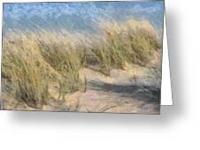 Beach Grass Greeting Card