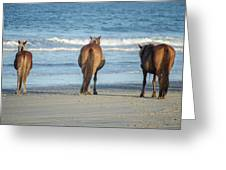 Beach Horses Greeting Card