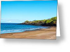 Beach In The Galapagos Greeting Card