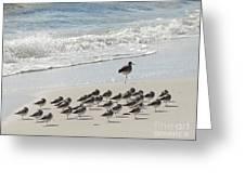 Beach Mantra Greeting Card