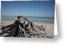 Beach Ngirl Greeting Card